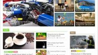 colormag-magazine-news-wp-theme-terbaru